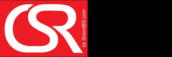 CSR School final logo